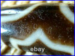 Exceptional Ancient Like Quality Tibetan Agate Stone Dzi Bead With 3 Eyes (a)